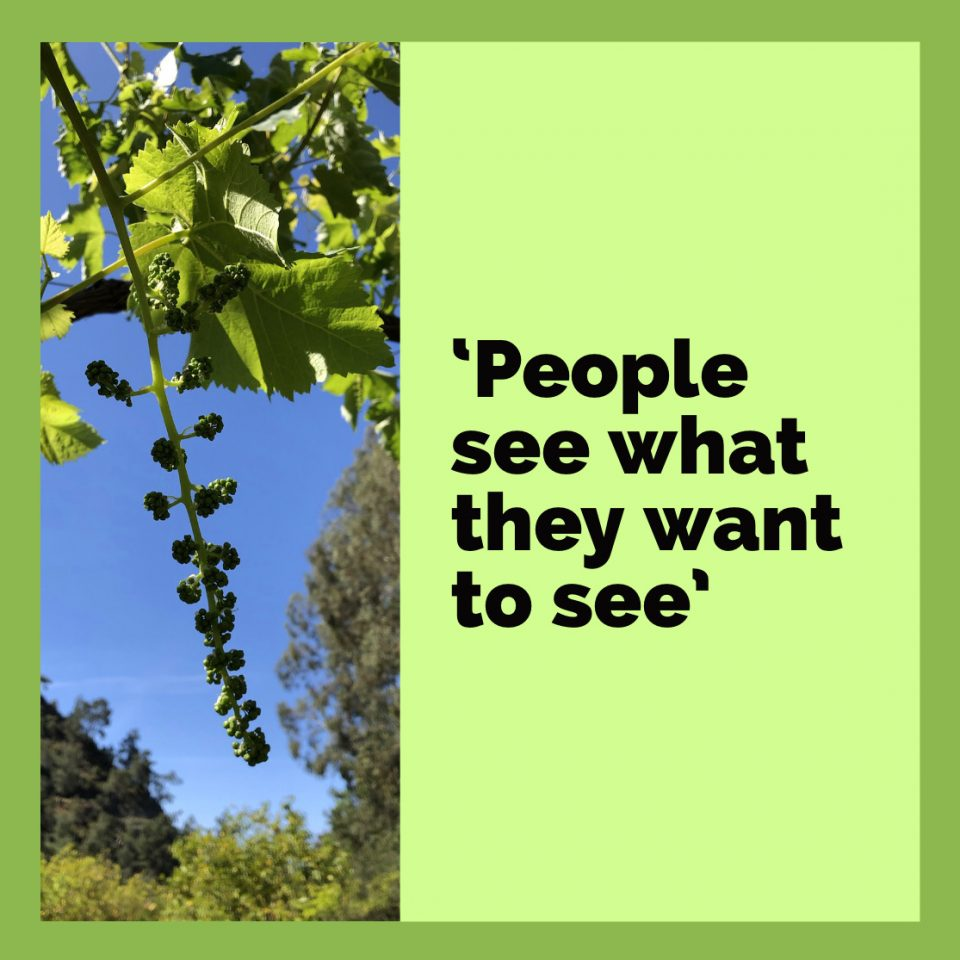 People see what they want to see…